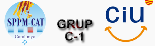 Esmena  del Grup Parlamentari de CIU